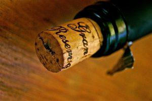 בישול ביין המדריך המלא - עידן בן אור